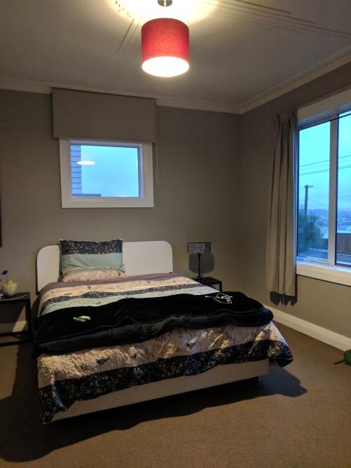 airbnb room in dunedin