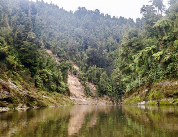 Whanganui River Day 1
